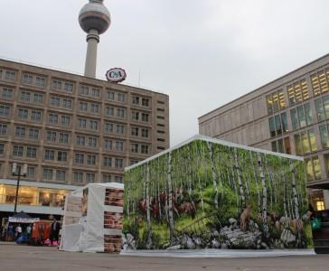 berlinvvsf4 web
